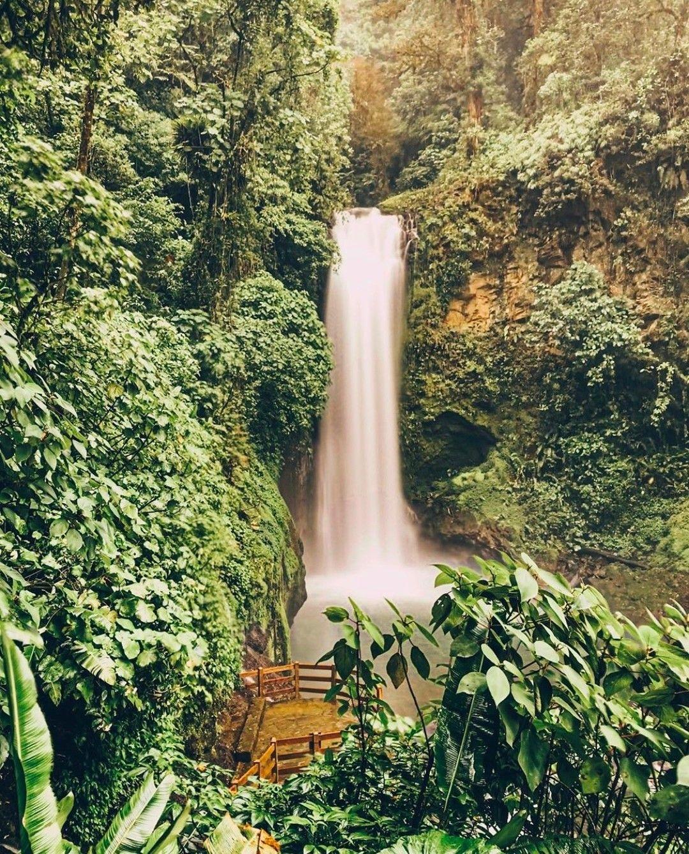 5b60f958db4b96b8348f8090628983bb - Pura Vida Gardens And Waterfalls Jaco