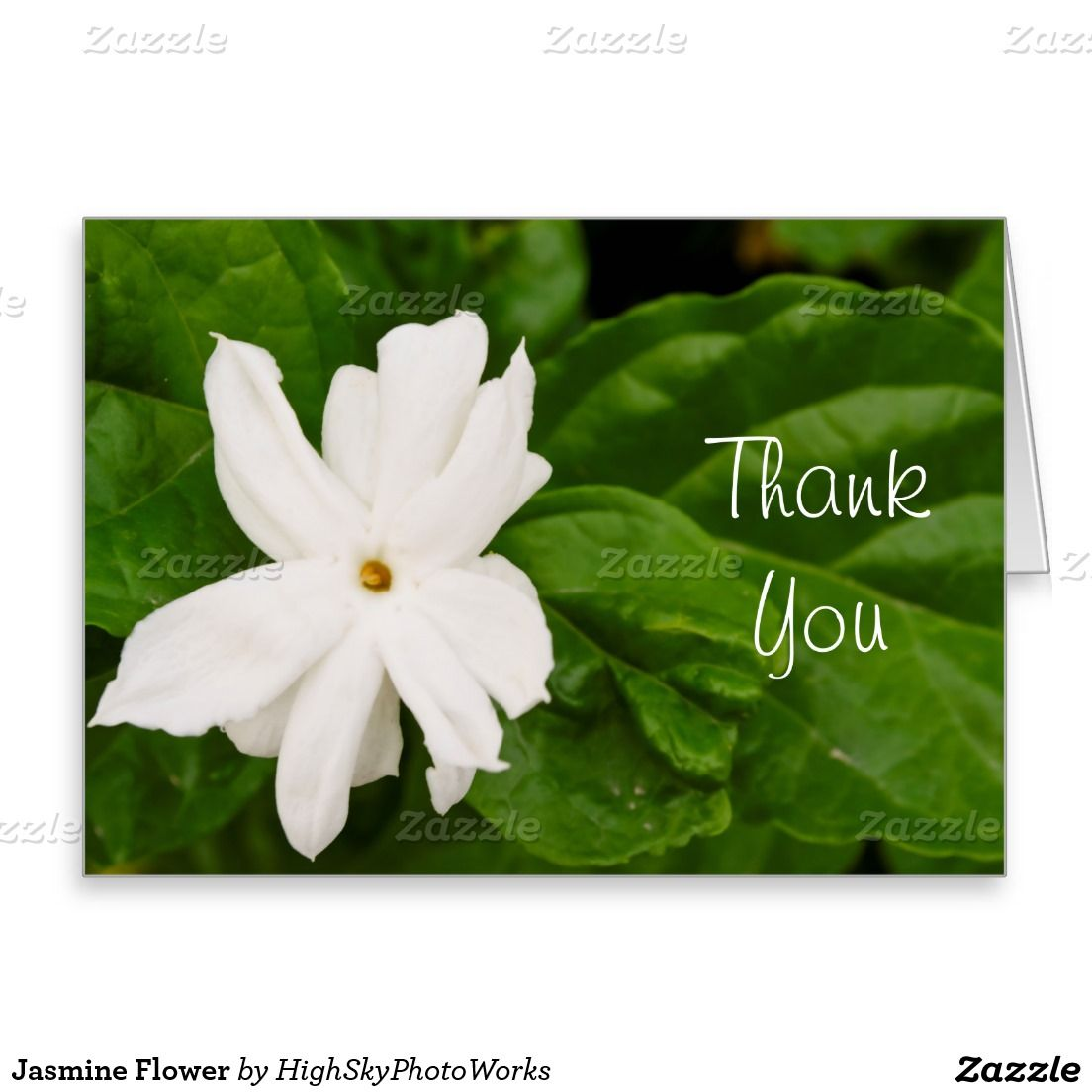 Jasmine Flower Greeting Card With Customizable Text Greeting Cards