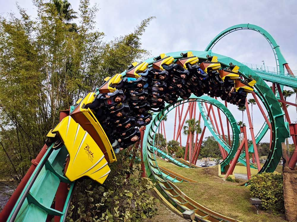 The Frog Family's Wild Guide to Busch Gardens Tampa in