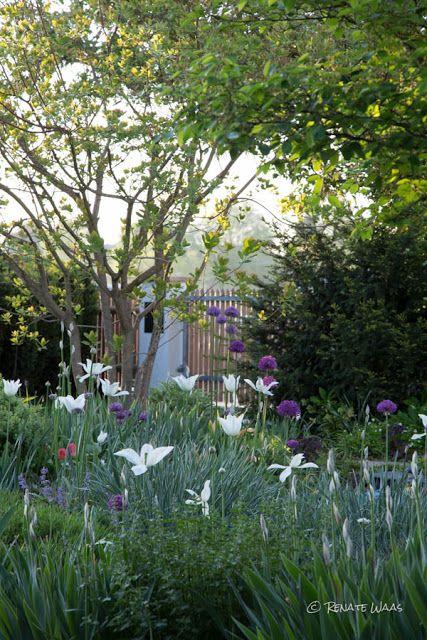 Gartenplanung gartendesign und gartengestaltung blumenbeete mit blumenzwiebeln pflanzen - Gartenplanung munchen ...