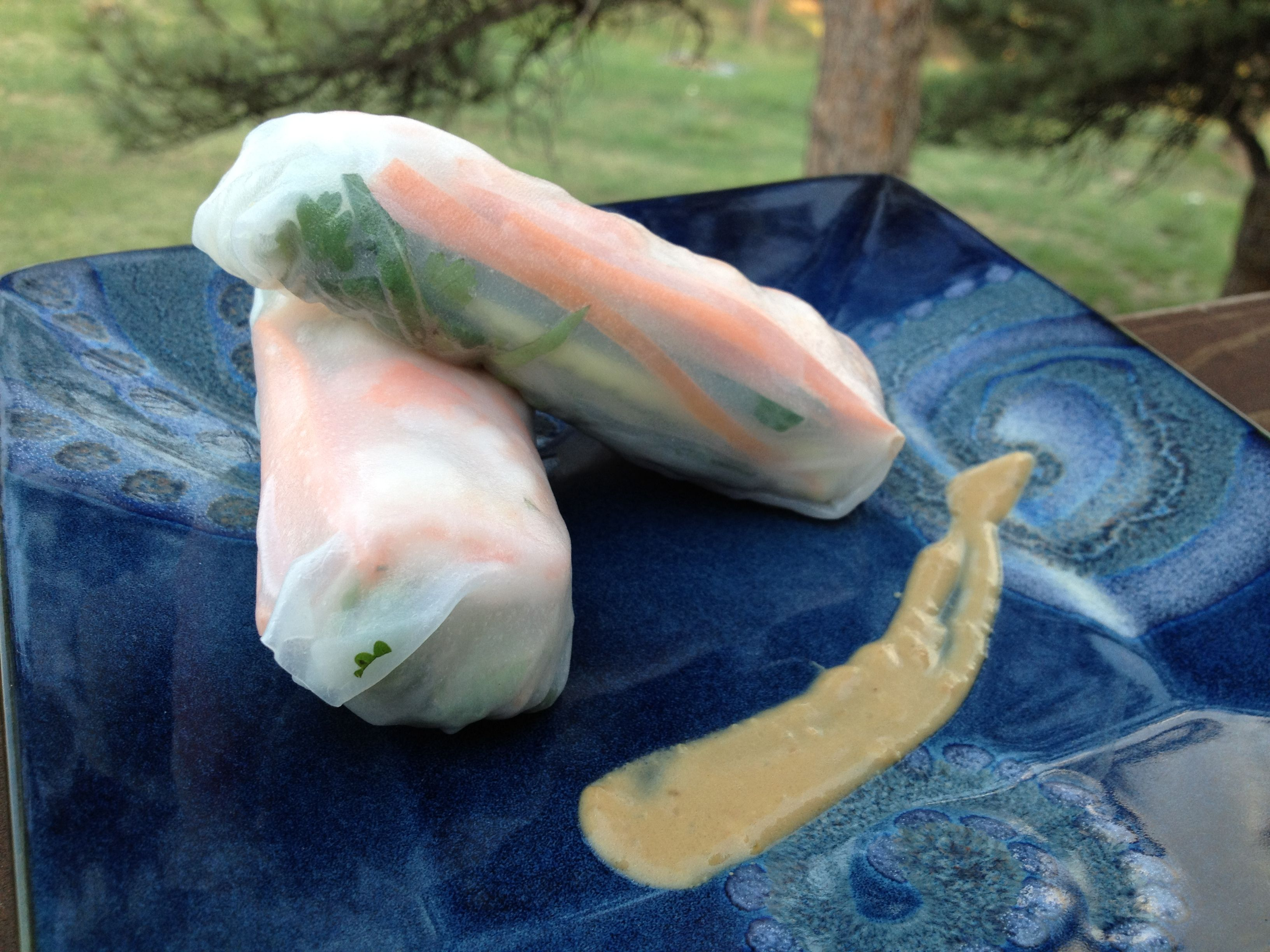 Shrimp Summer Rolls with Peanut-Hoisin Sauce (minus the shrimp!)