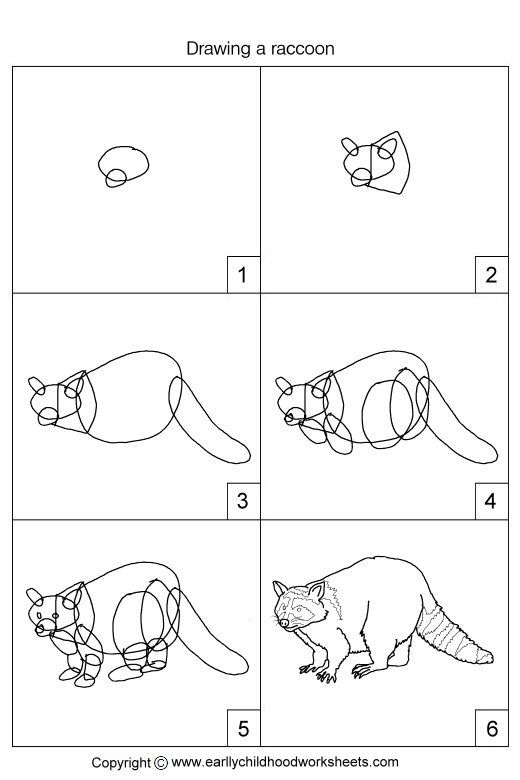 Dessin un raton laveur dessine moi un mouton dessin - Mouton a dessiner ...