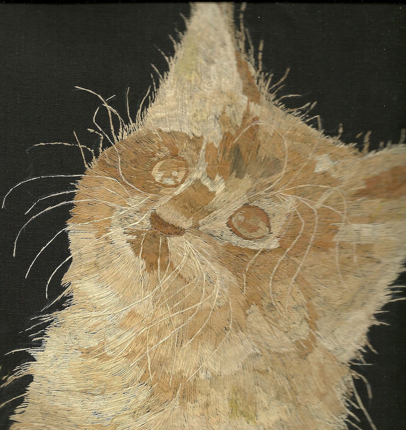 CAT Handmade leaf art   Not a print, photo or painting Leaf art of CAT by museumshop on Etsy