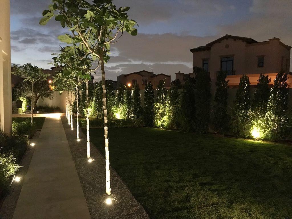 Up Lighting Simple But Effective Lumo Led Landscape