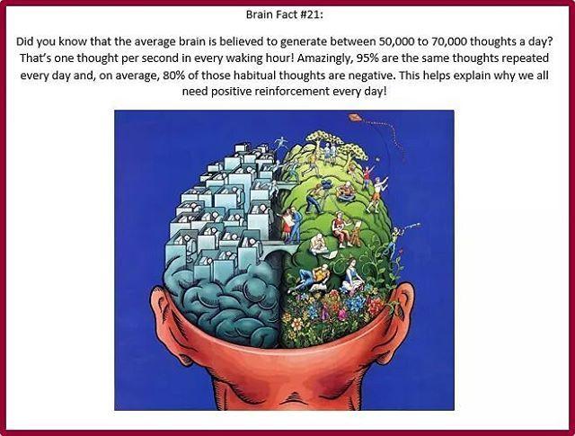 #BrainAneurysmAwarenessMonth Daily Fact