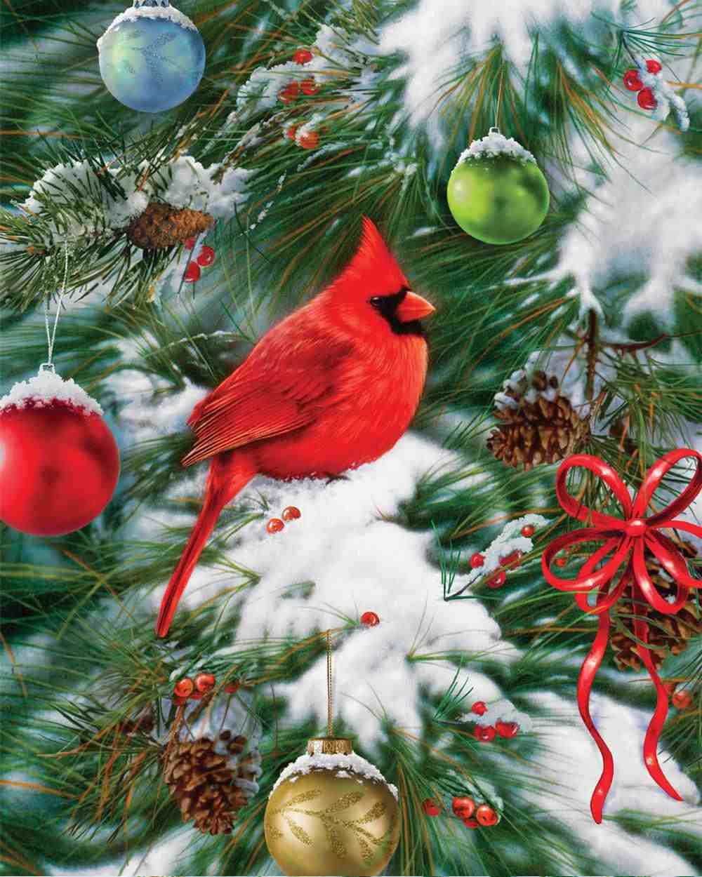 Leanin Tree Christmas Card Little Bird Decorating Birdhouse