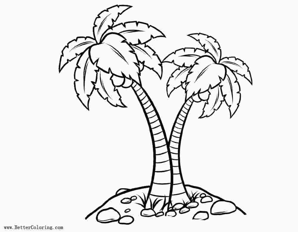Realistic Palm Tree Coloring Pages Tree Coloring Page Leaf
