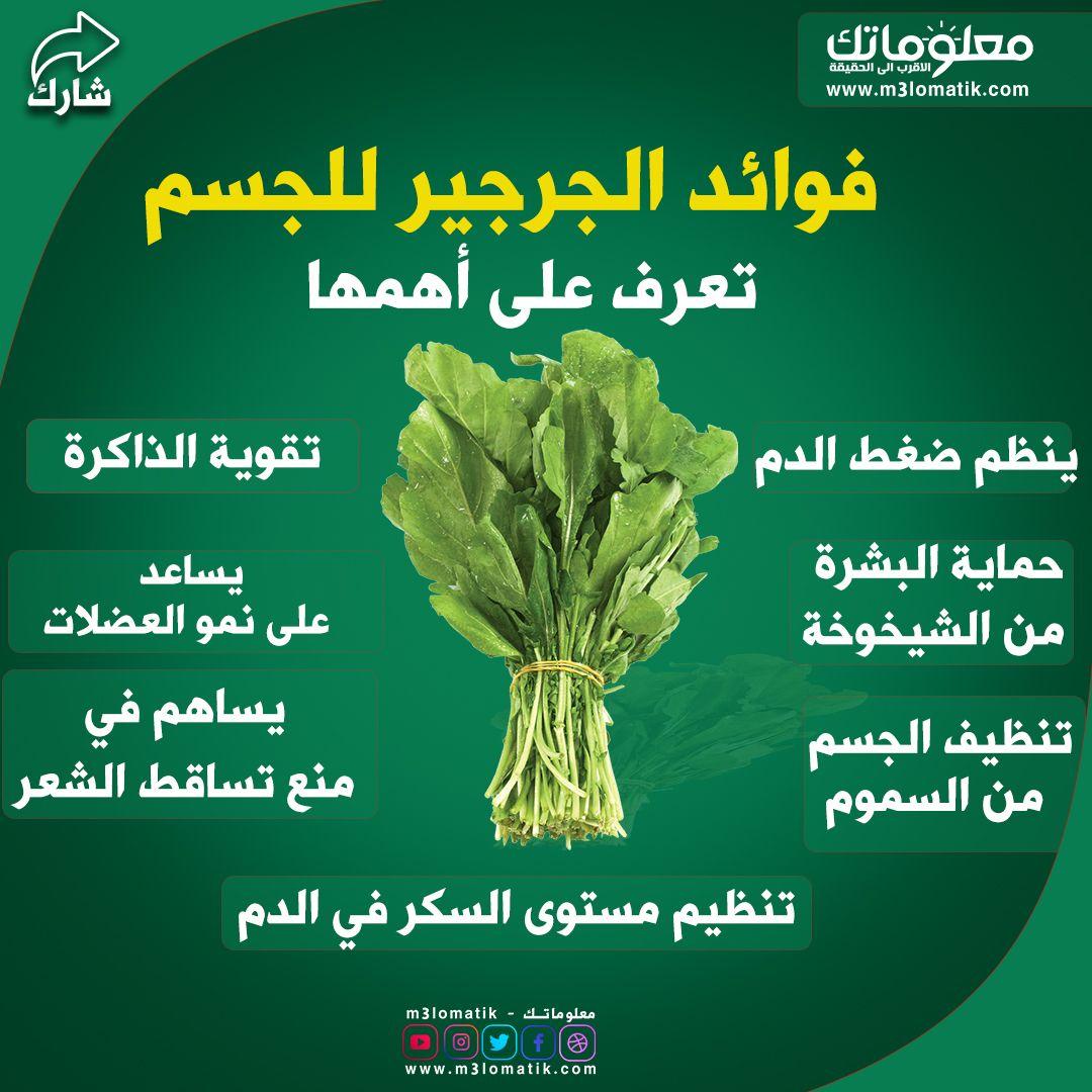 فوائد الجرجير الصحية للجسم In 2020 Herbs Food Blog