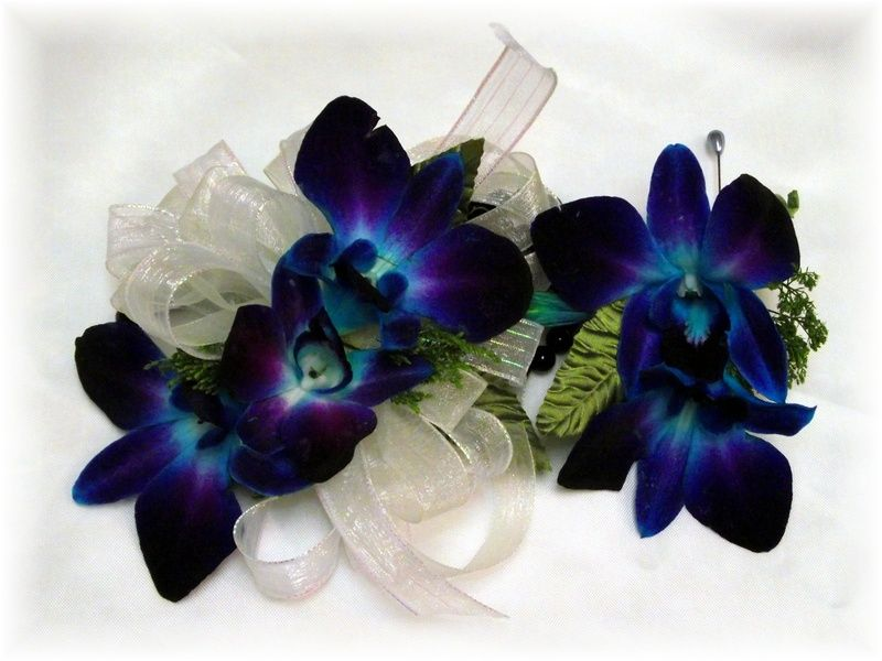 Meaning Of The Blue Orchid Luxury Decadence Love Beauty Vitality Strength Desire Peace Tranquility Power Homecoming Flowers Blue Orchids Blue Corsage