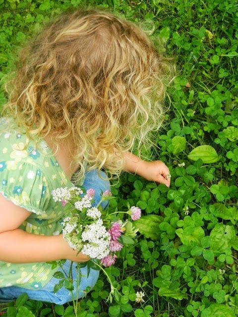Pick a Wild Flower Bouquet