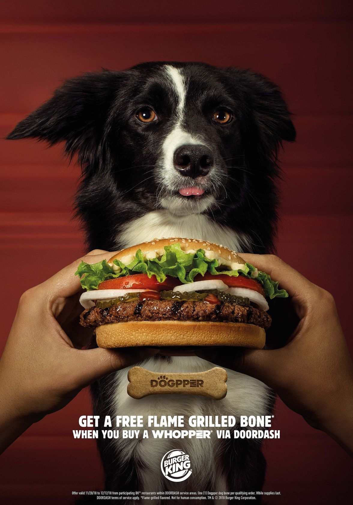 Burger King Is Going To The Dogs And Giving Away Free Flame