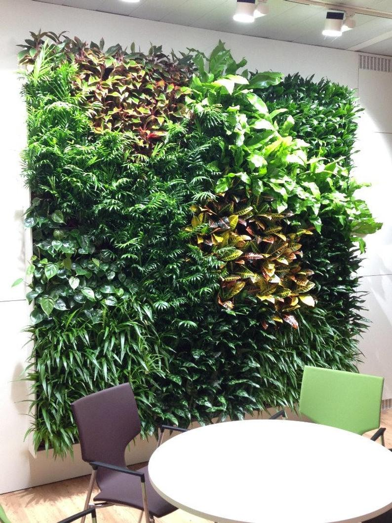 Green Wall Garden Vertical Planter Grid And Planting Tray For Home And Office Green Wall Garden Vertical Garden Planters Wall Garden