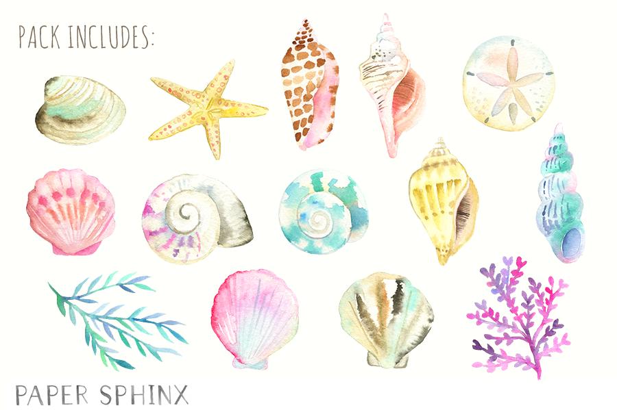 Ocean Seashells Watercolor Pack Seashell Clipart Nautical Watercolor Art