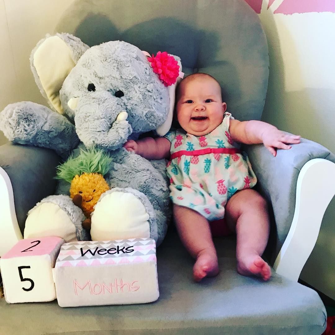 Our precious little cupcake turned 5 months old on the 27th of June  #lyla #lylabear #princess #princesslife #preciousmoments #precious #mylove #myprecious #mybabygirl #myhappyplace #5monthsold #happybaby #smileybaby #babygirl #babylove #babychild #mommabear #mommasgirl #elephant #pineapple #pineappledress #chunkybutfunky #chubbycheeks #princesschubbs #soinlovewithyou #iloveyou #friyay