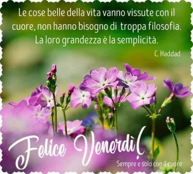 Immagini belle buon venerd per whatsapp da scaricare for Immagini divertenti buongiorno venerdi