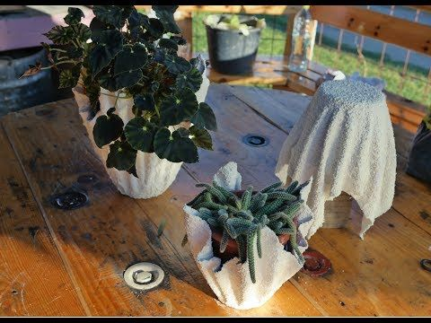 How to make Cement Planters - DIY Cement Planter - YouTube ... Planters Youtube on