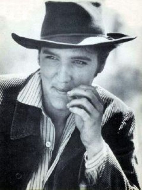 Elvis Presley Elvis Presley Photos Elvis Presley Images Elvis