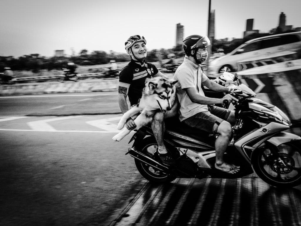 @Vietnam720 RT @mrneilmassey: #HuskiesForLife #Saigon #Vietnam #StreetPhotography