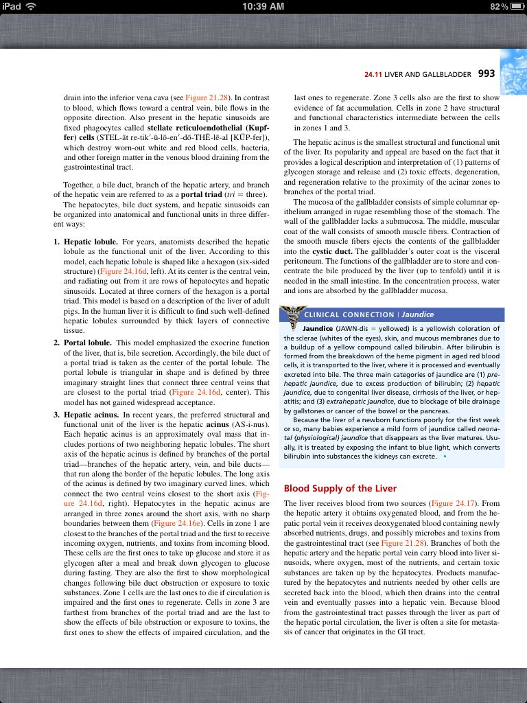 Principles of Anatomy and Physiology, Chapter 24, The ...