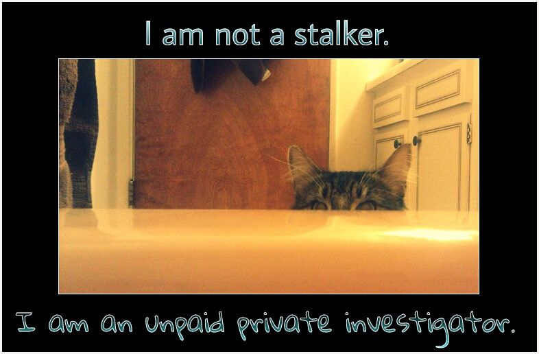 I am not a stalker. I am an unpaid private investigator.  R.I.P. Danger. Forever in our hearts.