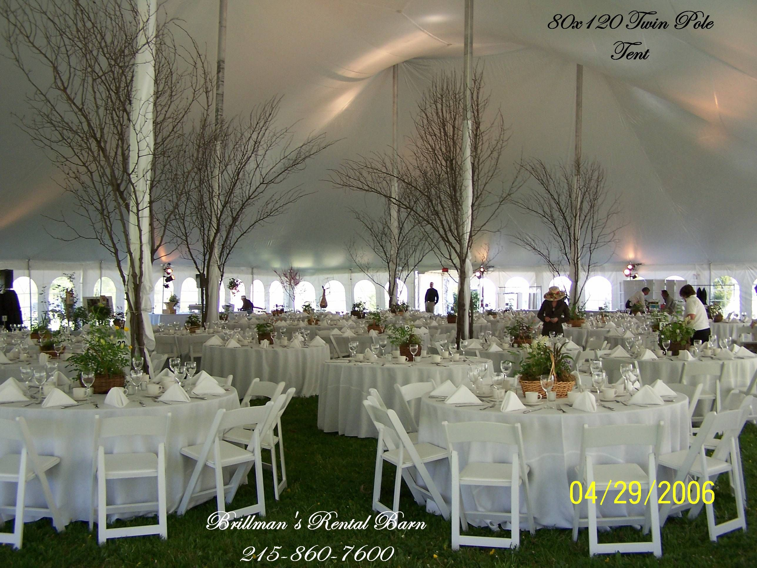 Wedding decorations rental  Tree branches around the tent poles  Wedding  Pinterest  Tent