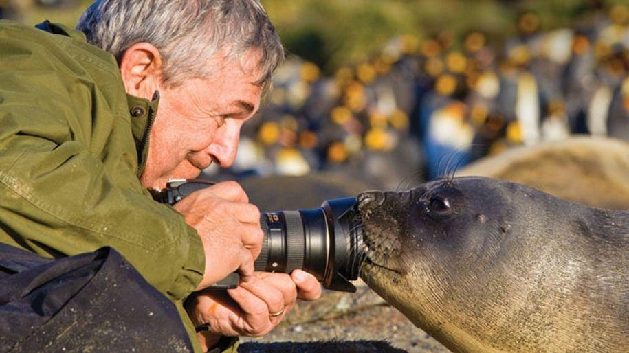 зарубежные фотографы животных природа