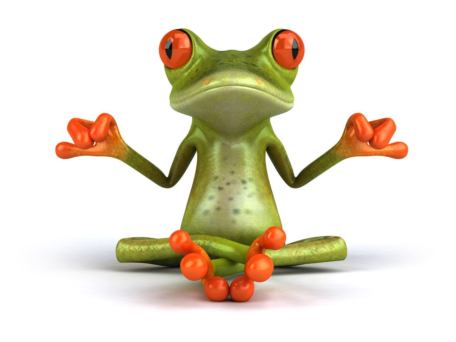 Hd frog cartoon wallpaper hd wallpapers picture cartoon - Frog cartoon wallpaper ...