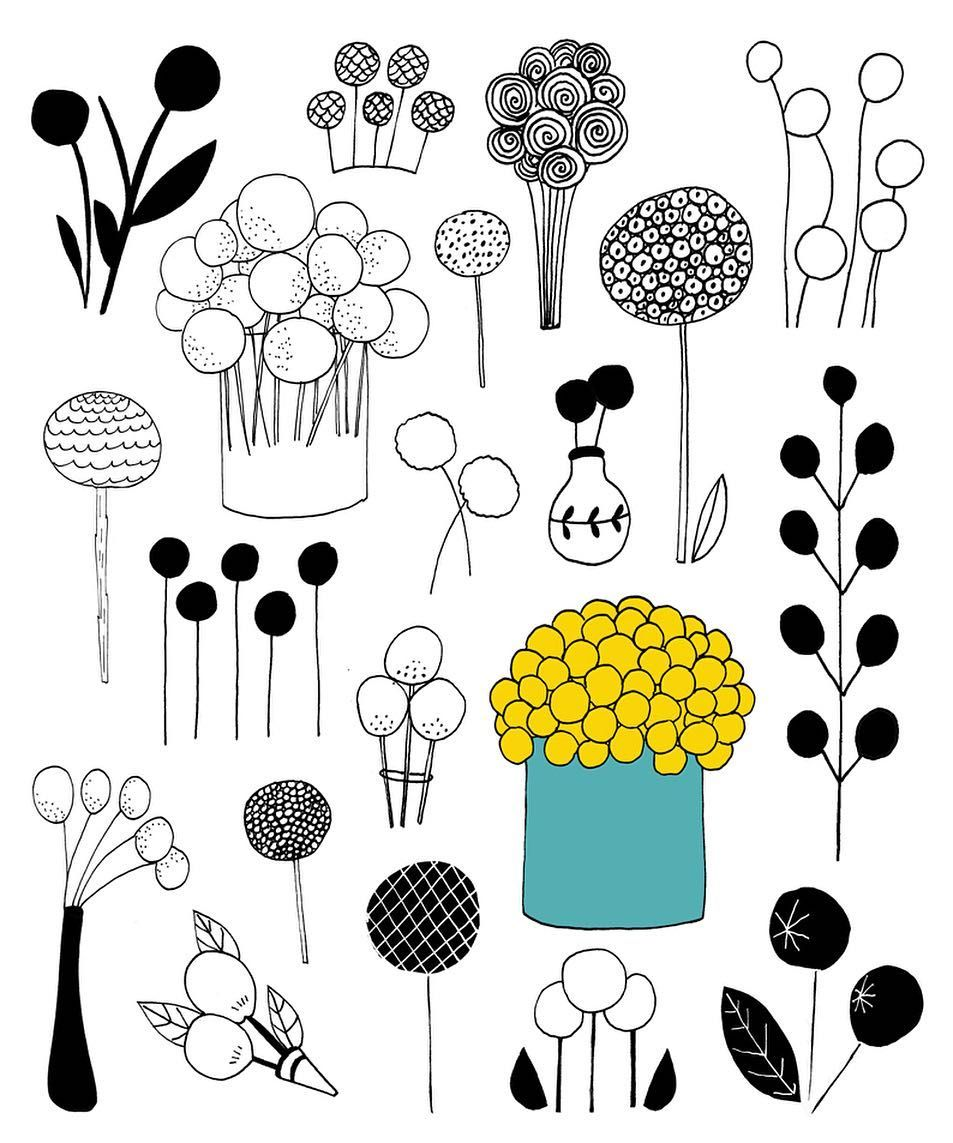 Instagram Photo By Lisa Congdon Apr 23 2016 At 7 32pm Utc Flower Doodles Billy Buttons Lisa Congdon
