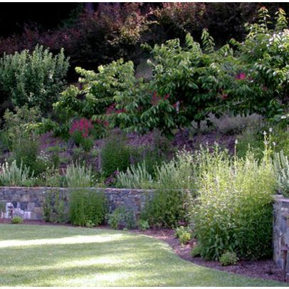 Ornamental grasses steep slopes landscape slope design for Ornamental grass landscape ideas