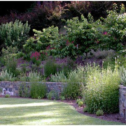 Ornamental grasses steep slopes landscape slope design for Ornamental grass landscape ideas