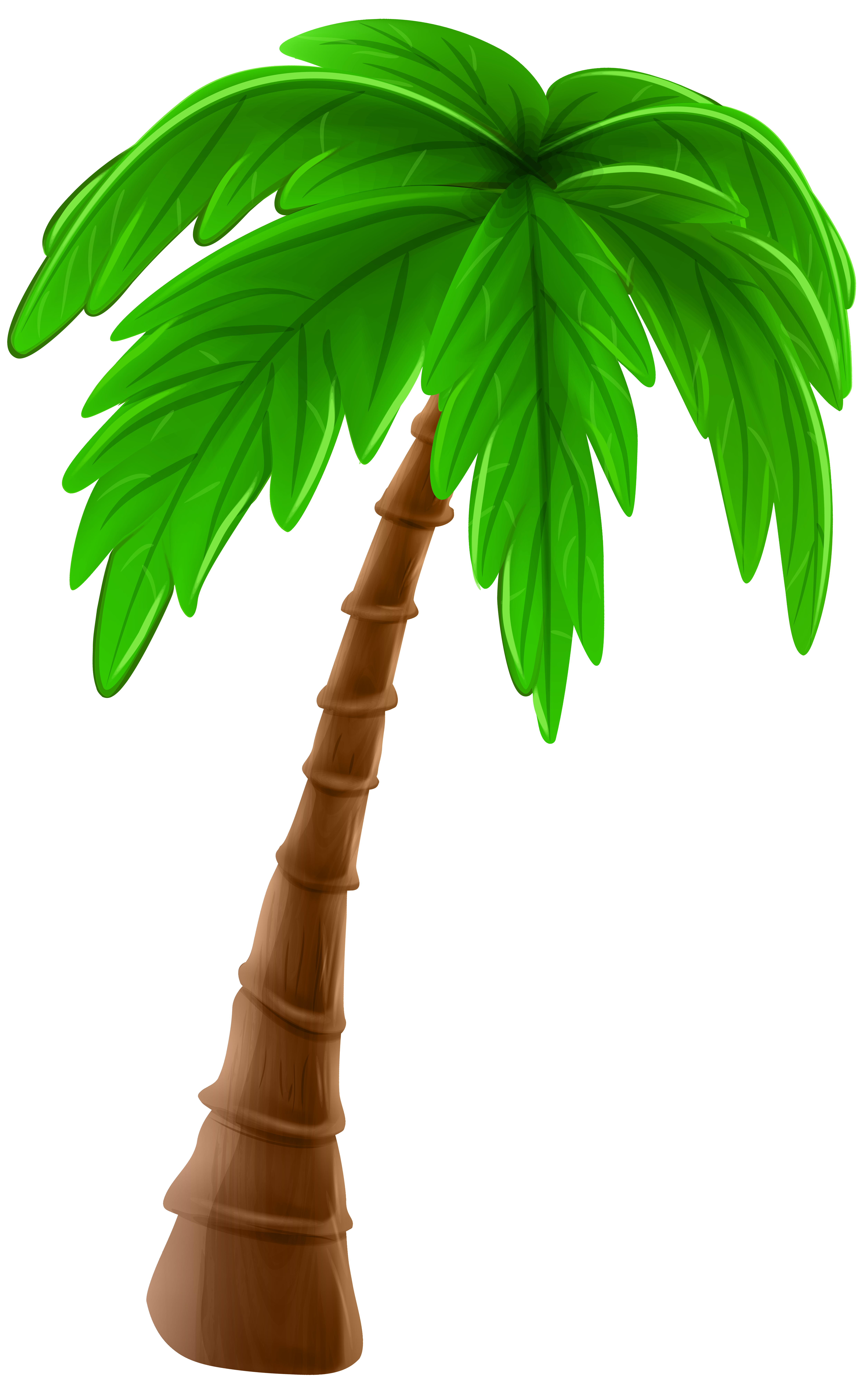 Palm Tree Leaves Clipart Yahoo Image Search Results Palm Tree Clip Art Cartoon Palm Tree Cartoon Trees