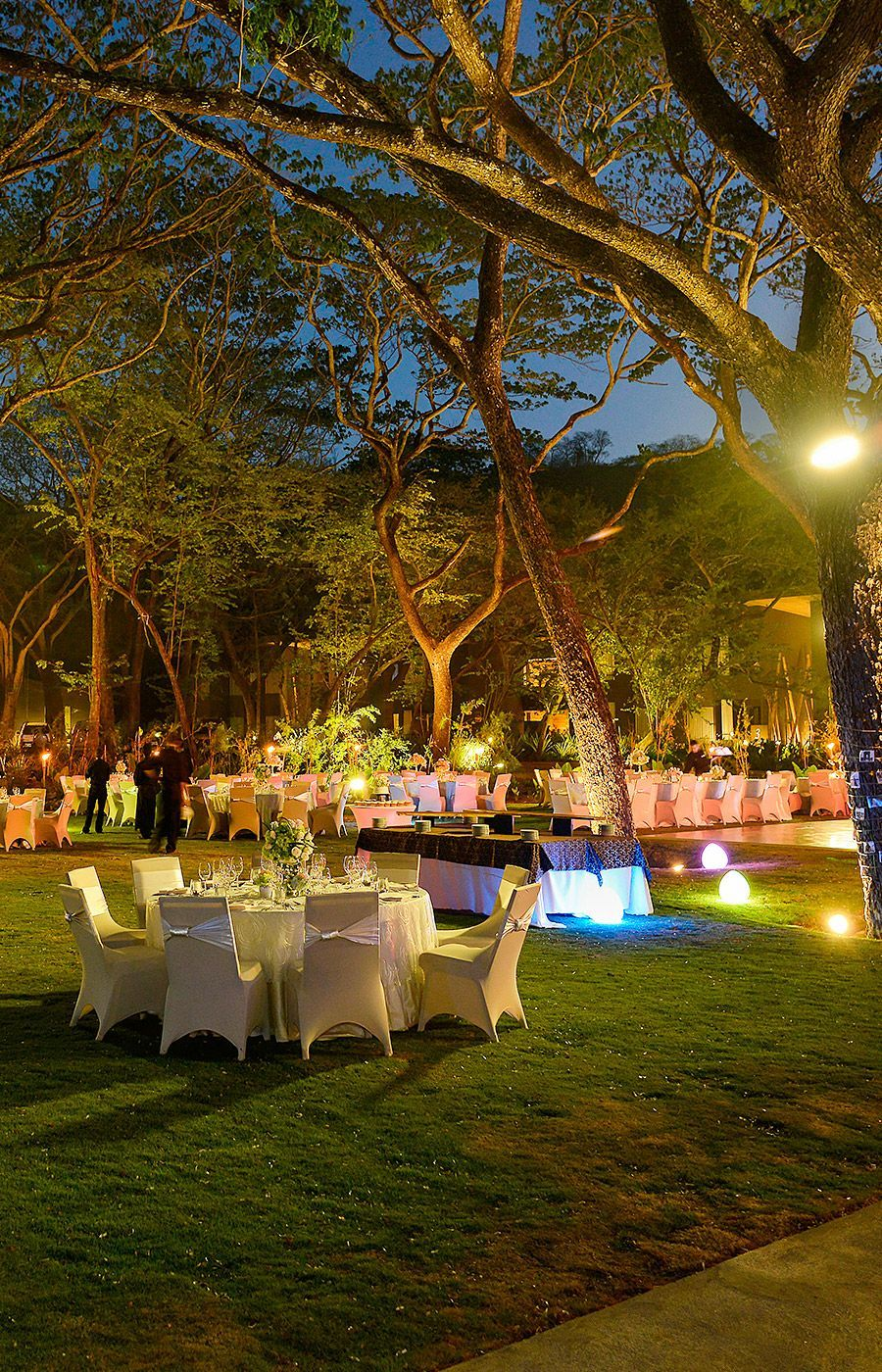 Garden wedding decorations night  Romantic wedding dinner setup surrounded by nature  Weddings