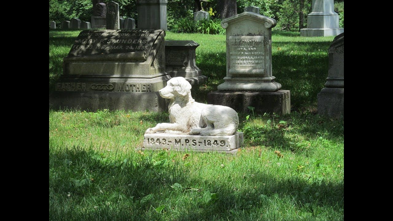 Family Who Buried Their Dog's Ashes In The Backyard Looks ...