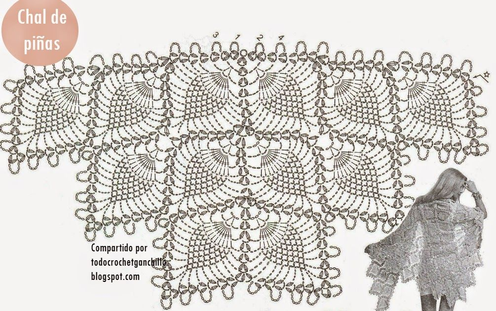 Perfecto Ganchillo Libre Patrón De Chal De Piña Ilustración - Manta ...