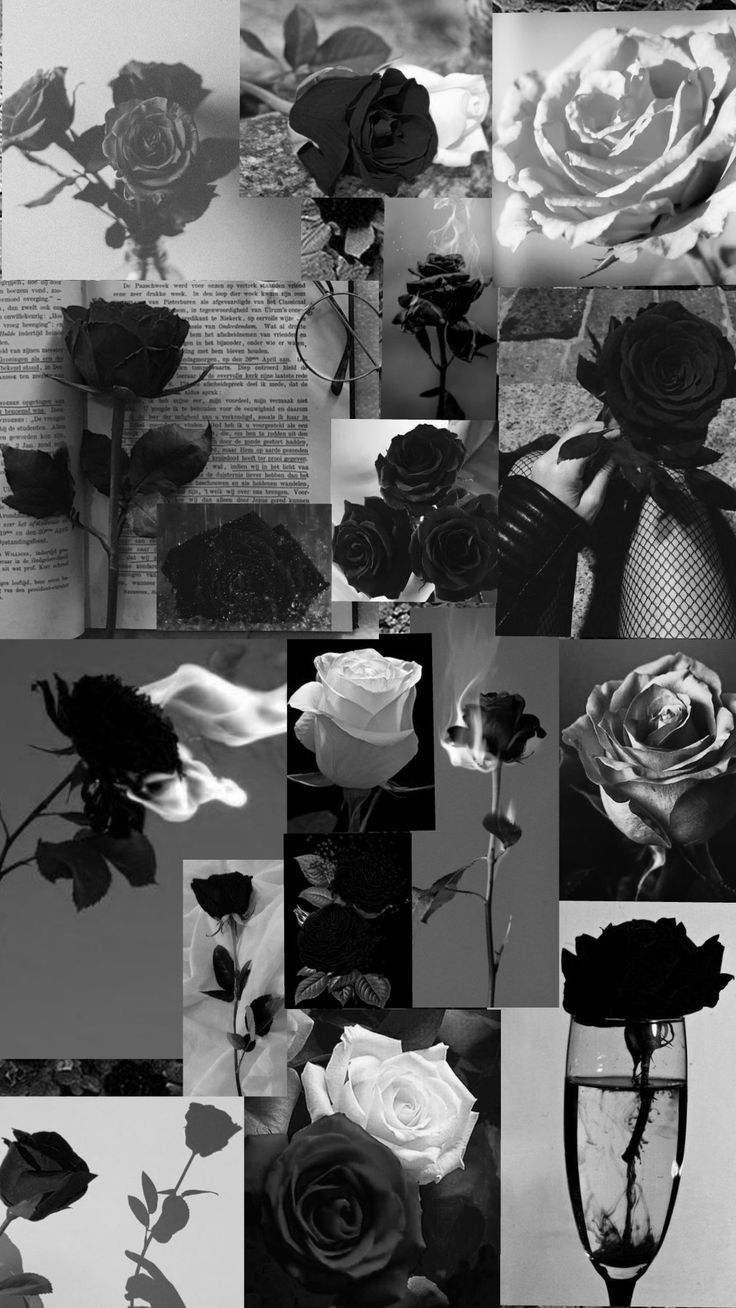 Roses wallpaper in 2021   Iphone wallpaper hipster, Black aesthetic wallpaper, Black wallpaper iphone