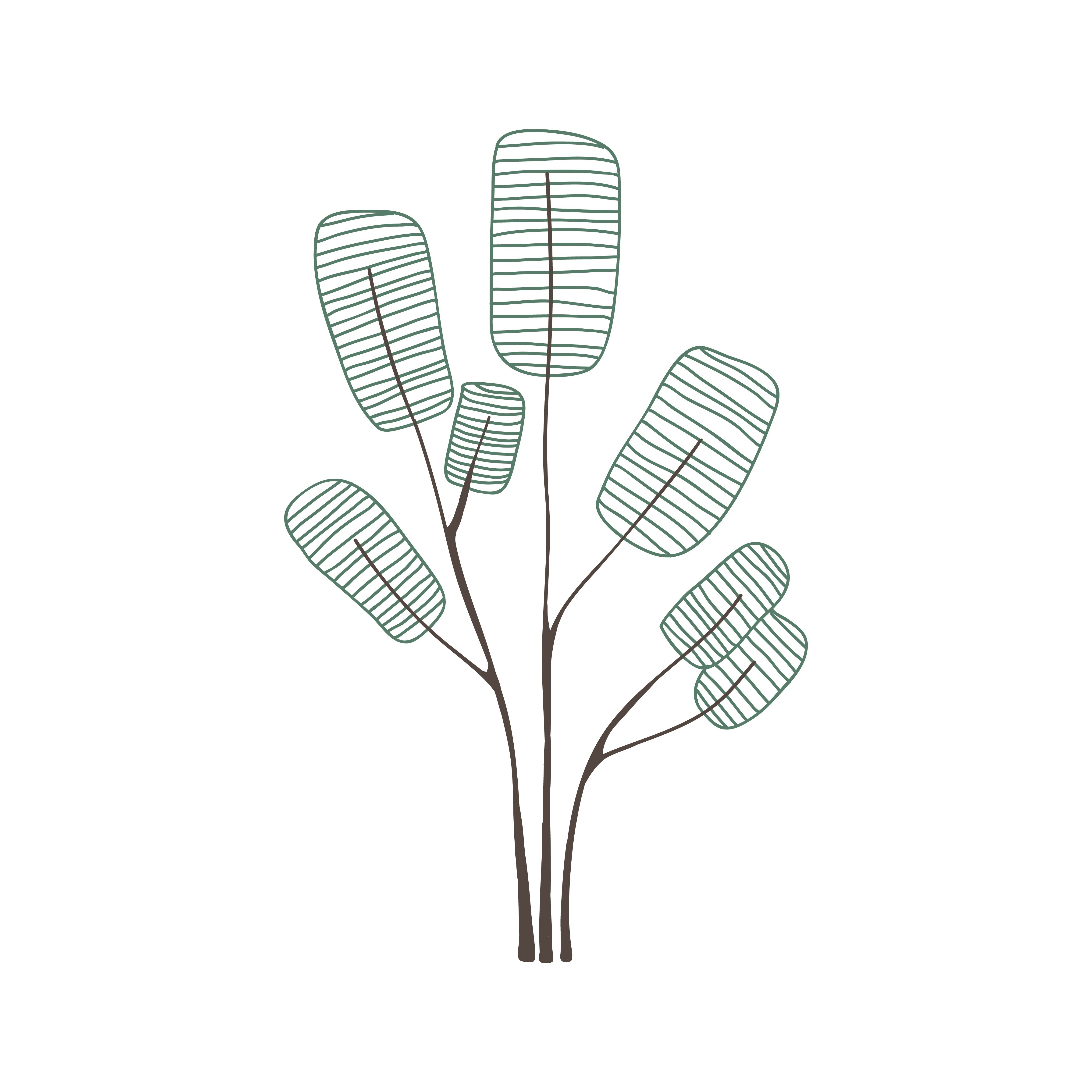 Silhouette Tree png download - 800*600 - Free Transparent Microphone png  Download. - CleanPNG / KissPNG
