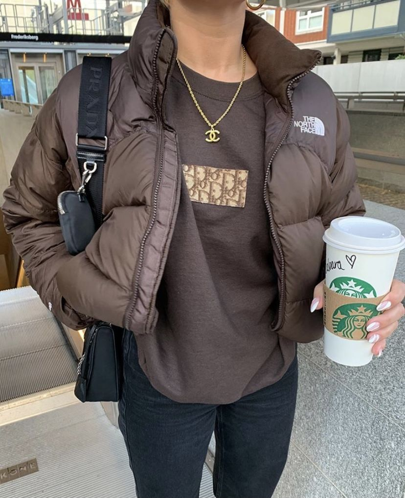 Brown Fit The North Face Puffer Jacket And Dior Vintage Sweater Trendy Outfits Fashion Brown Outfit [ 1017 x 828 Pixel ]