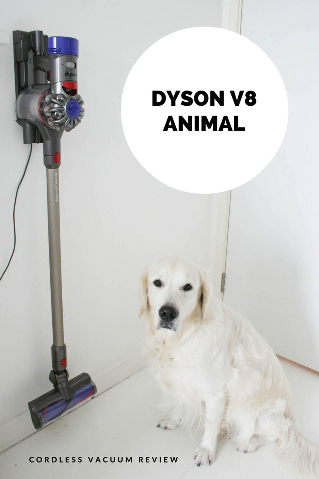 Dyson V8 Avis Dyson V8 Animal Cordless Vacuum Review How To Keep Your House