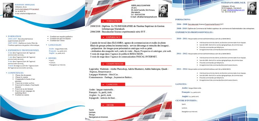 Curriculum Vitae Example Design Original In Format Word