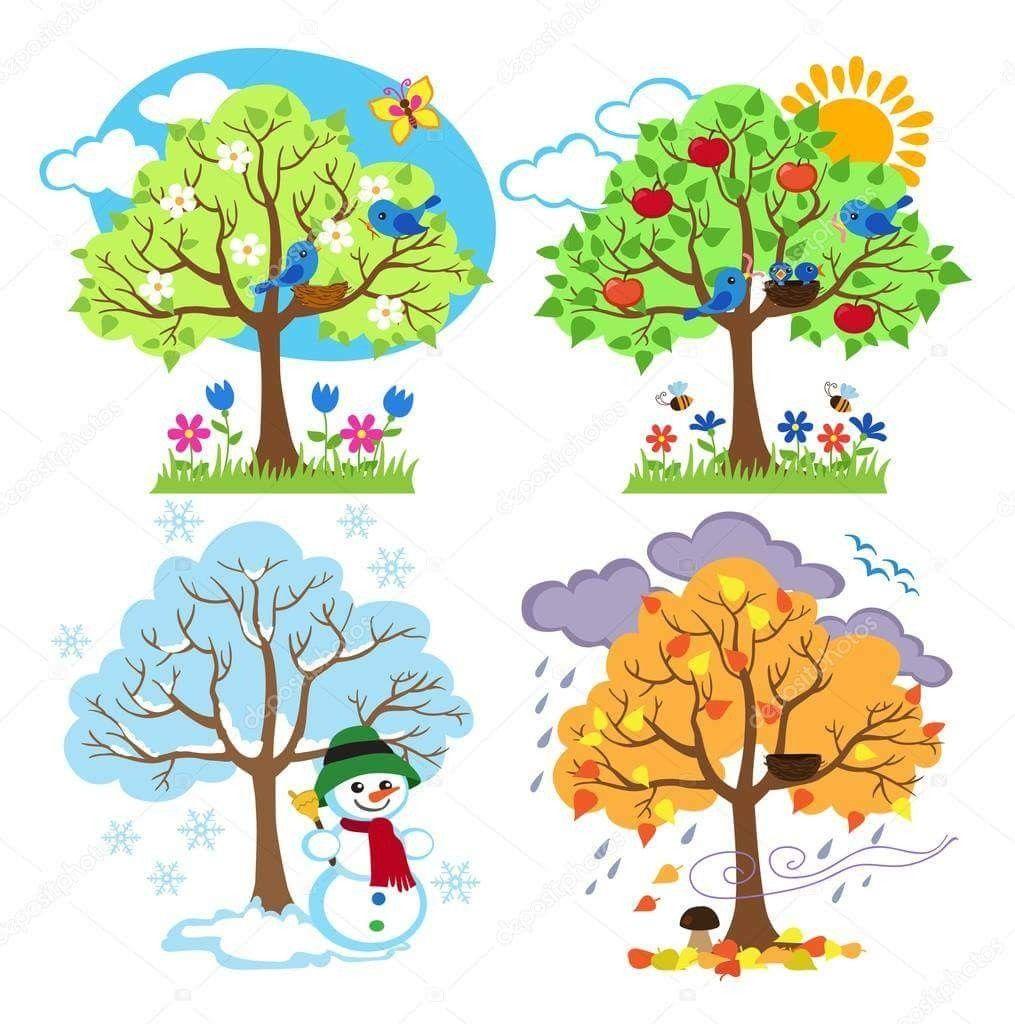 four seasons art tree clipart winter trees autumn summer school days  [ 1015 x 1024 Pixel ]