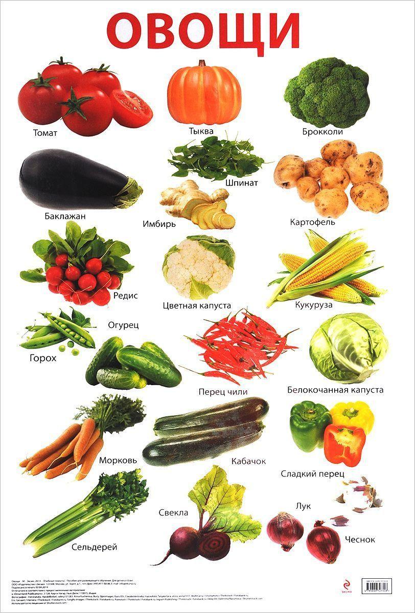 Занятия для детей об овощах, фруктах и ягодах | Овощи для ...