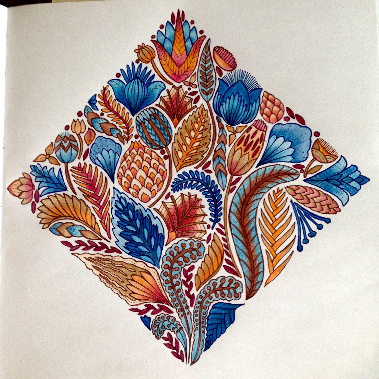 millie marotta wild savannah my coloring pages pinterest