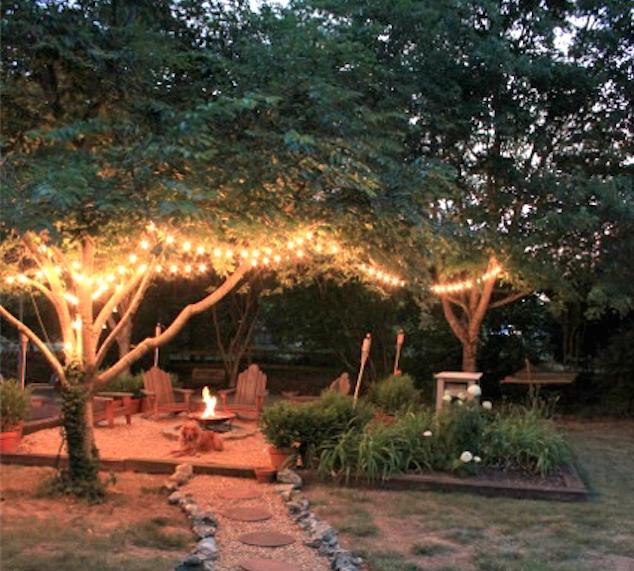The Back Bocce Beer Garden Lights In Trees Etc In 2020 Backyard Backyard Fire Dream Backyard