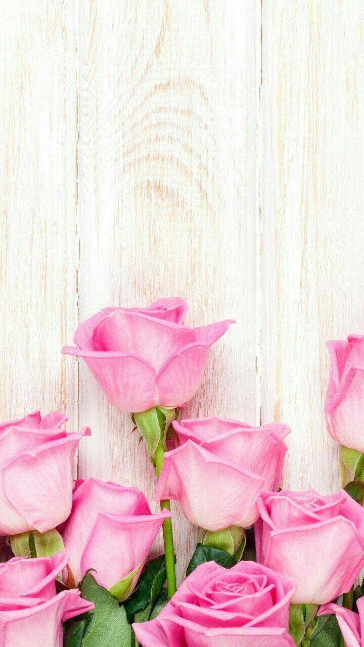 Iphone Wood Wallpapers Hd From Silverspiralstudio Com Poster Bunga Mawar Cantik Doodle Bunga