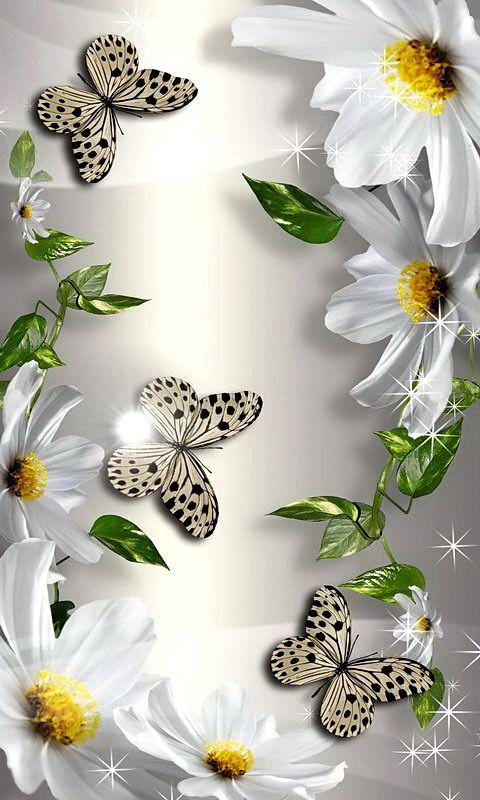 Butterfly – mobile9 4K