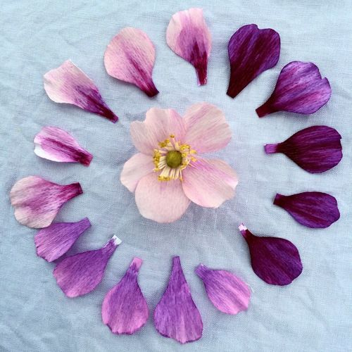 Japanese anemone papercraft pinterest crepe paper flowers fun with paper japanese anemone petals mightylinksfo Gallery
