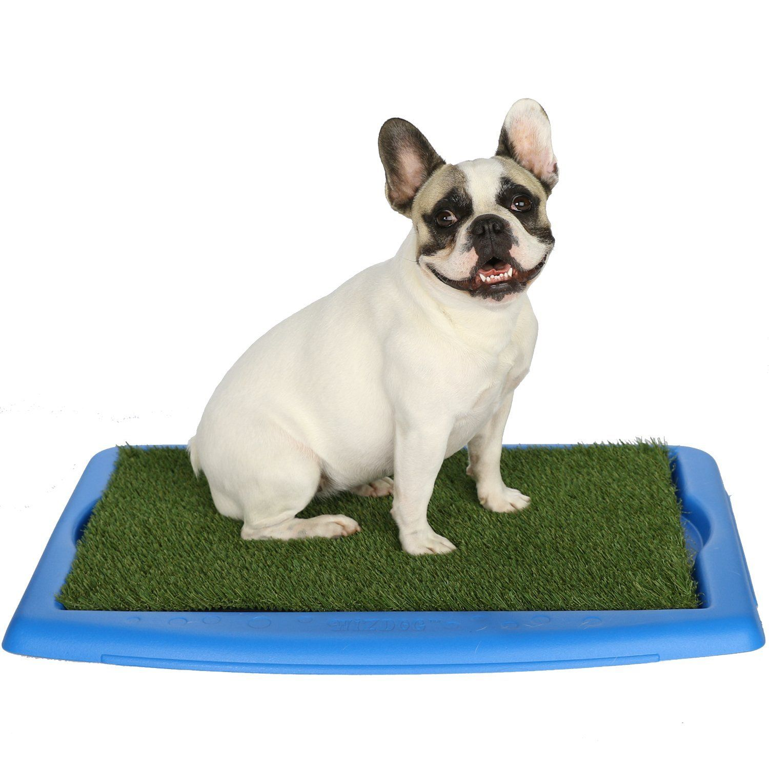 Wizdog Indoor Dog Potty With Turf ** To View Further For