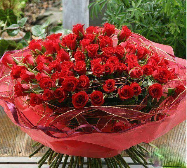 Épinglé par Marnia Oualid sur Marnia | Belles fleurs, Gif ...