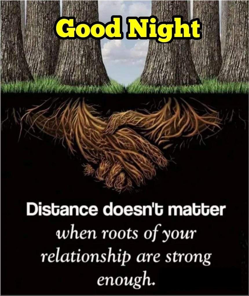 Night night quotes