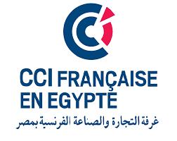 غرفة التجارة الفرنسية تنظيم مصر كأس الأمم الإفريقية يتزامن مع الإنتعاش الاقتصادي Chicago Cubs Logo Sport Team Logos Team Logo